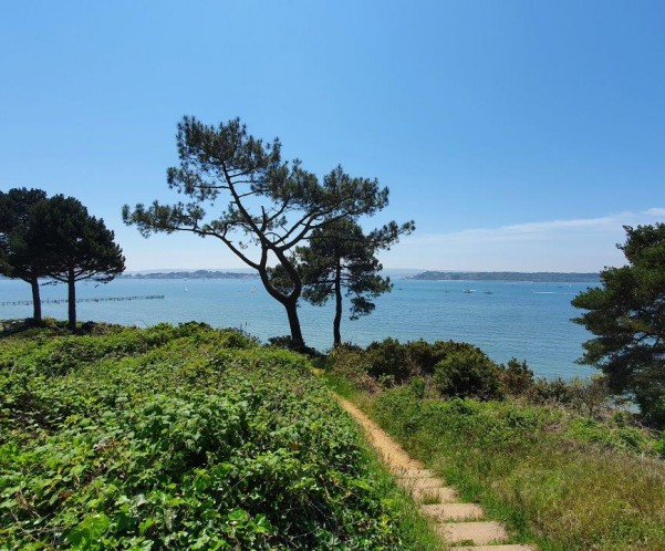 10 Reasons Why Poole Is The Best Place To Live In The UK